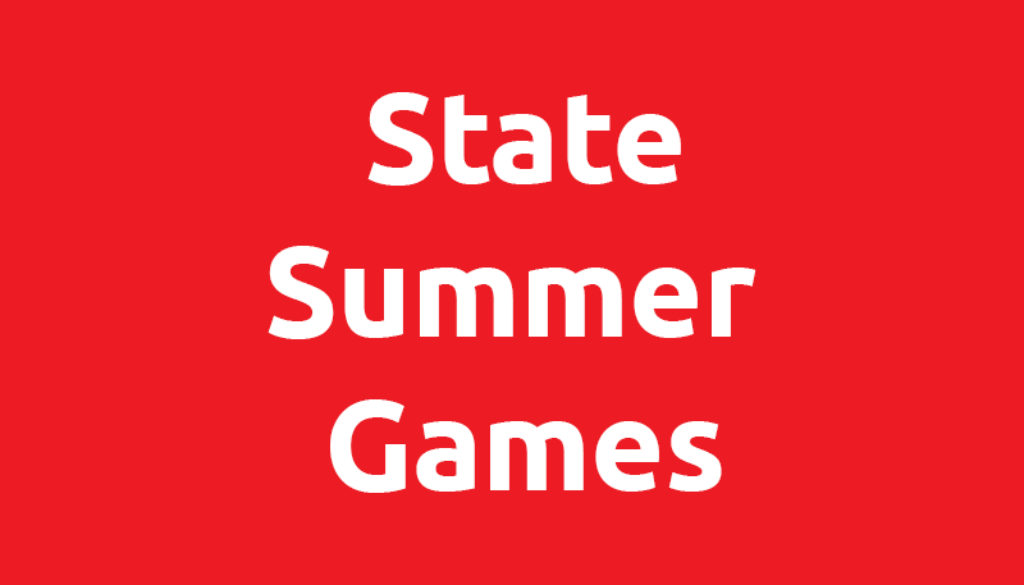 sonm-state-summer-gamess